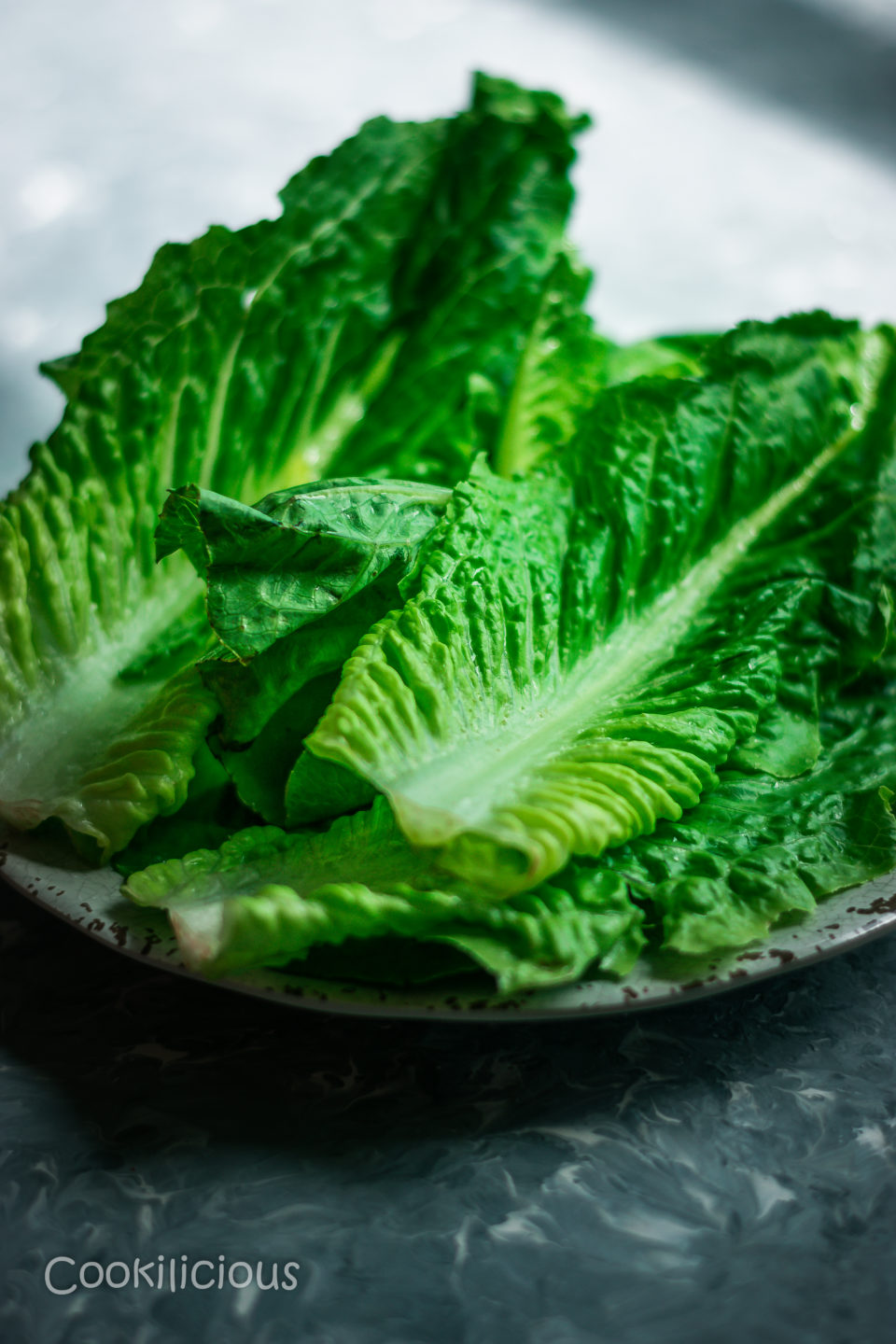 a plate full of lettuce to make Indian Green Chutney with Leftover Lettuce Leaves