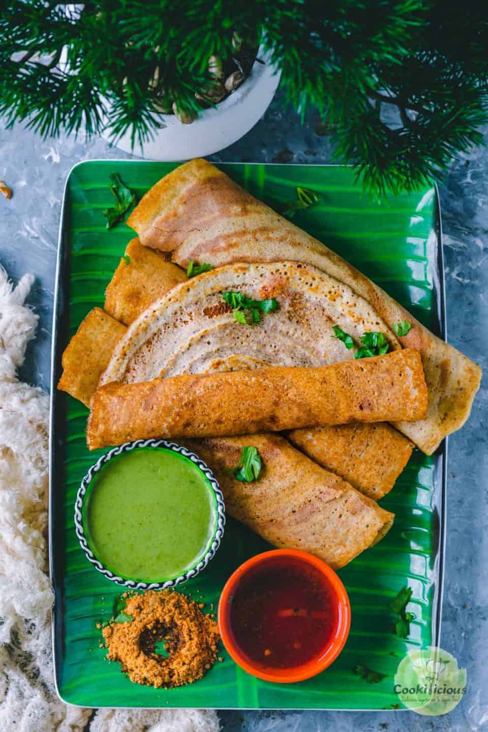 rolled Quinoa Dosa served in a tray